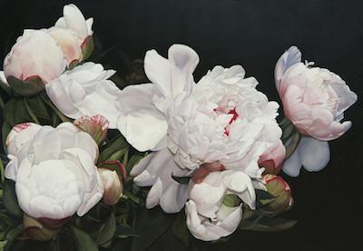 Heather's Peonies 102 x 147 cm